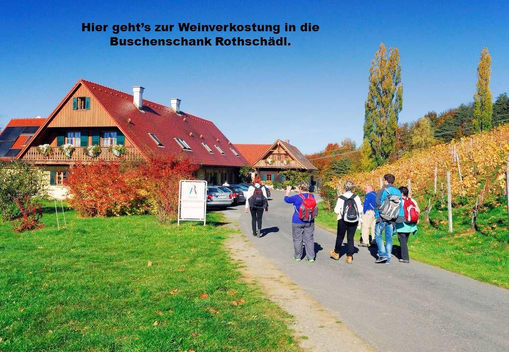 Hier gehts zur Weinverkostung in die Buschenschank Rothschädl.