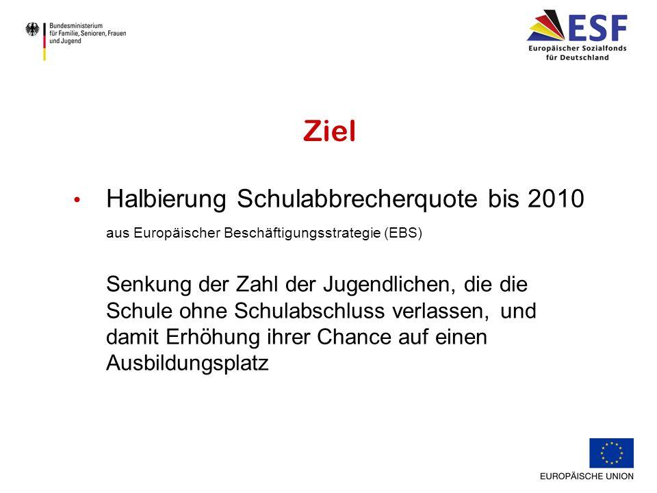 Halbierung Schulabbrecherquote bis 2010 aus Europäischer Beschäftigungsstrategie (EBS) Senkung der Zahl der Jugendlichen, die die Schule ohne Schulabschluss verlassen, und damit Erhöhung ihrer Chance auf einen Ausbildungsplatz Ziel