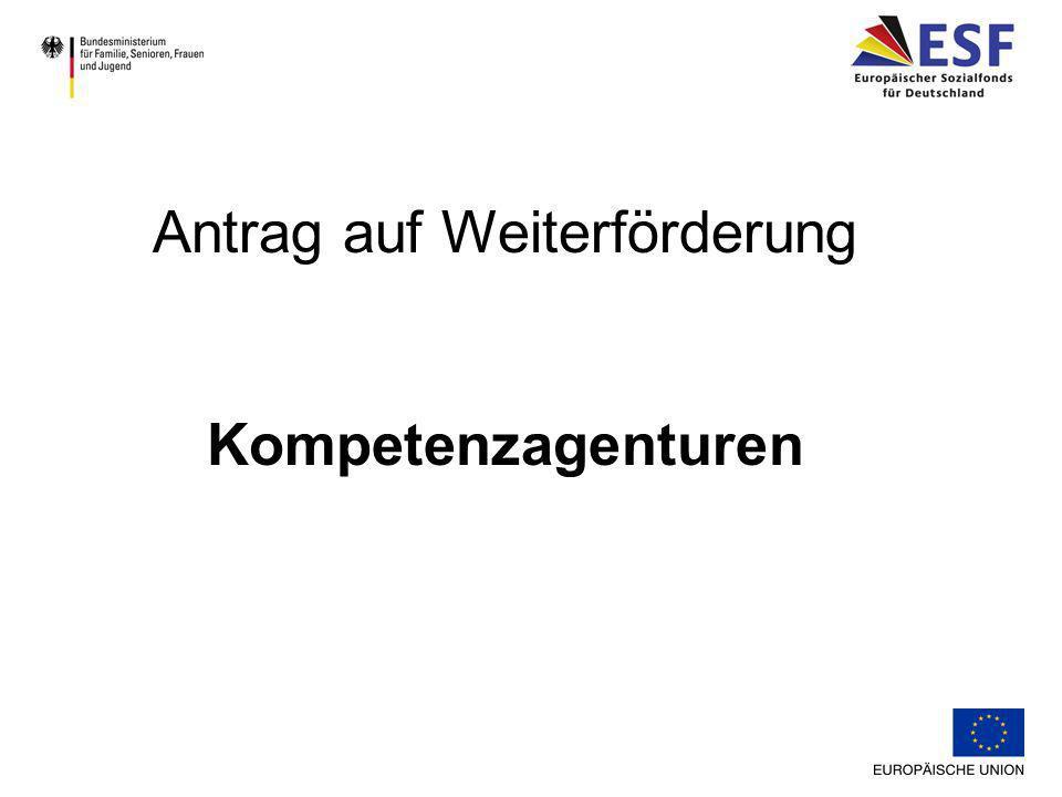 Wirkungsfeld der Kompetenzagentur Bevölkerungsstruktur Strukturdaten der Region/Stadt