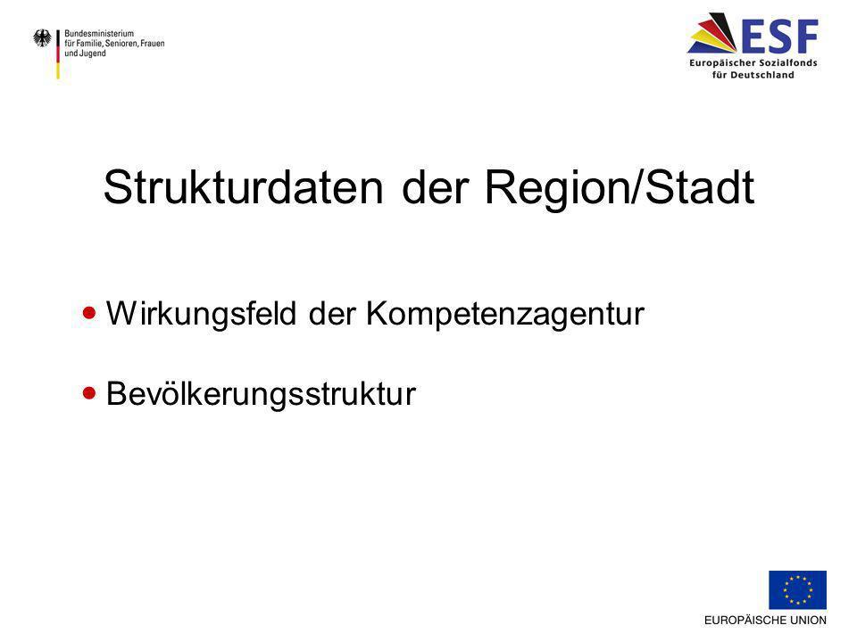 Förderstruktur Verbindliche Partner (mit Kofinanzierungsstatus) - Örtlicher Träger der öffentlichen Jugendhilfe - Agentur für Arbeit - Träger der Grundsicherung nach SGB II Lokale/regionale Förderstruktur und Netzwerk