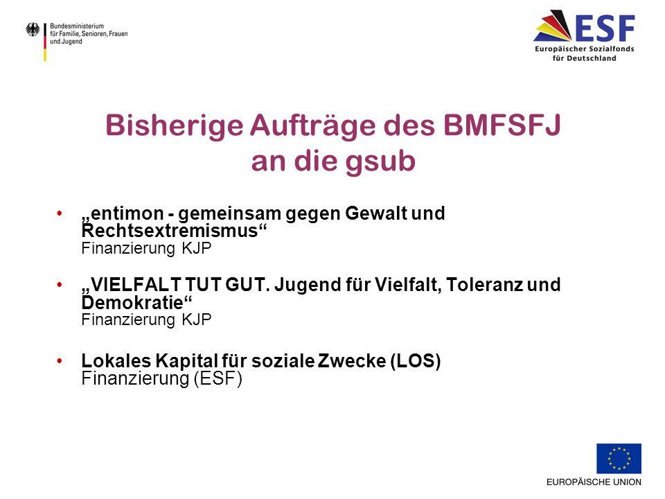 Bisherige Aufträge des BMFSFJ an die gsub entimon - gemeinsam gegen Gewalt und Rechtsextremismus Finanzierung KJP VIELFALT TUT GUT.