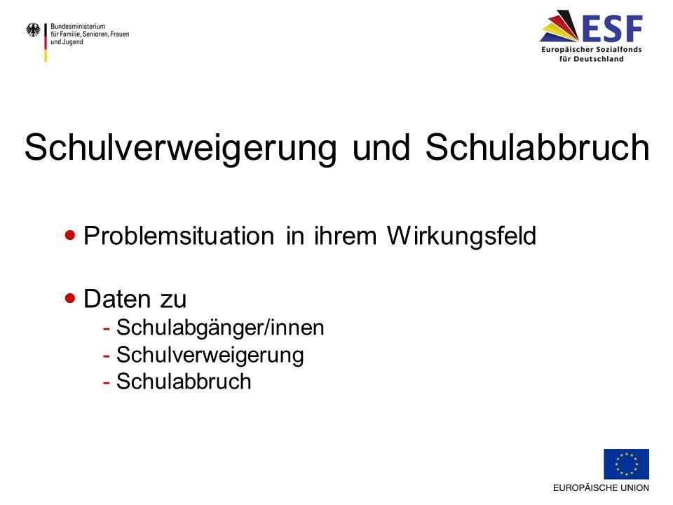 Problemsituation in ihrem Wirkungsfeld Daten zu -Schulabgänger/innen -Schulverweigerung -Schulabbruch Schulverweigerung und Schulabbruch