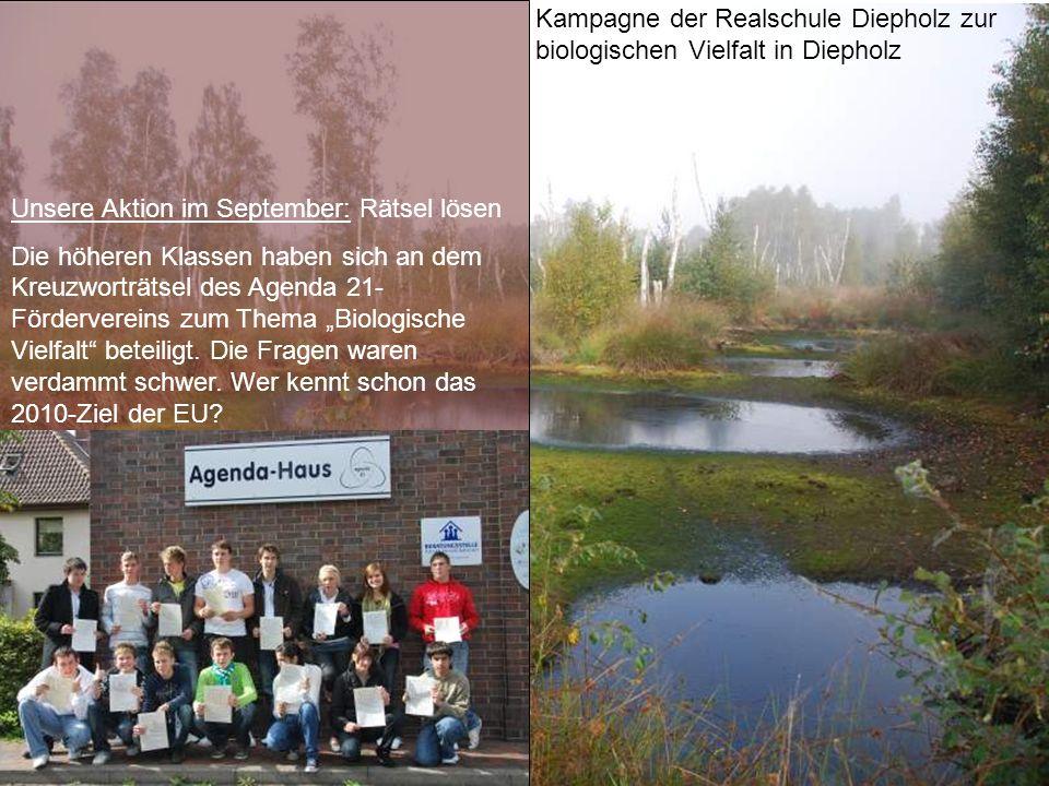Kampagne der Realschule Diepholz zur biologischen Vielfalt in Diepholz Unsere Aktion im September: Rätsel lösen Die höheren Klassen haben sich an dem