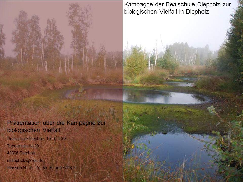 Kampagne der Realschule Diepholz zur biologischen Vielfalt in Diepholz Präsentation über die Kampagne zur biologischen Vielfalt. Realschule Diepholz,