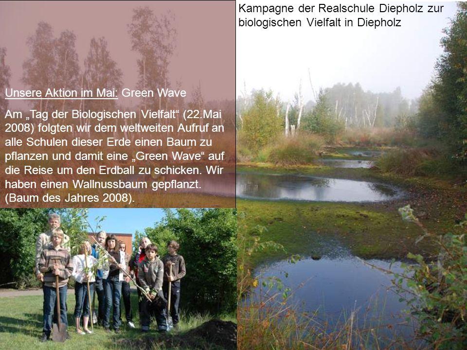 Kampagne der Realschule Diepholz zur biologischen Vielfalt in Diepholz Unsere Aktion im Mai: Green Wave Am Tag der Biologischen Vielfalt (22.Mai 2008)
