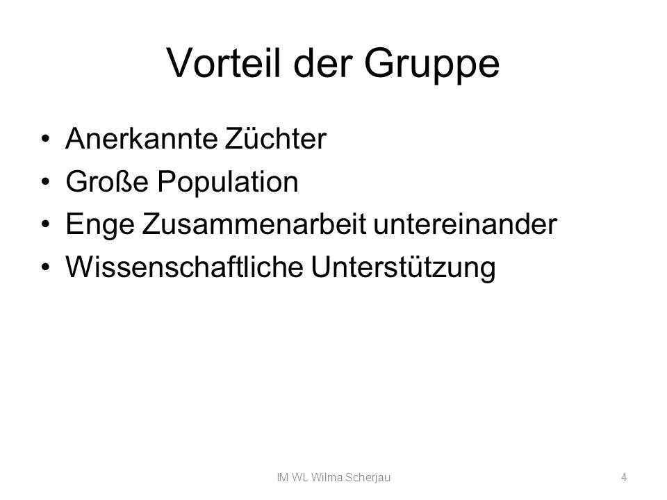 Heritabilität Die Erblichkeit dieses Merkmals ist nach Dr.Bienefeld auf 0,22% geschätzt Bruthygiene (Ausräumverhalten 0,28%) Putztrieb Vitalität (gute Futterversorgung, Standort..) 15IM Wilma Scherjau