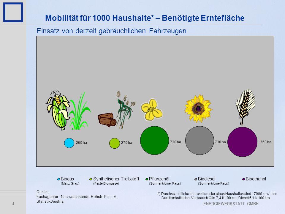 ENERGIEWERKSTATT GMBH4 Biogas (Mais, Gras) Synthetischer Treibstoff (Feste Biomasse) Pflanzenöl (Sonnenblume, Raps) Biodiesel (Sonnenblume Raps) Bioet