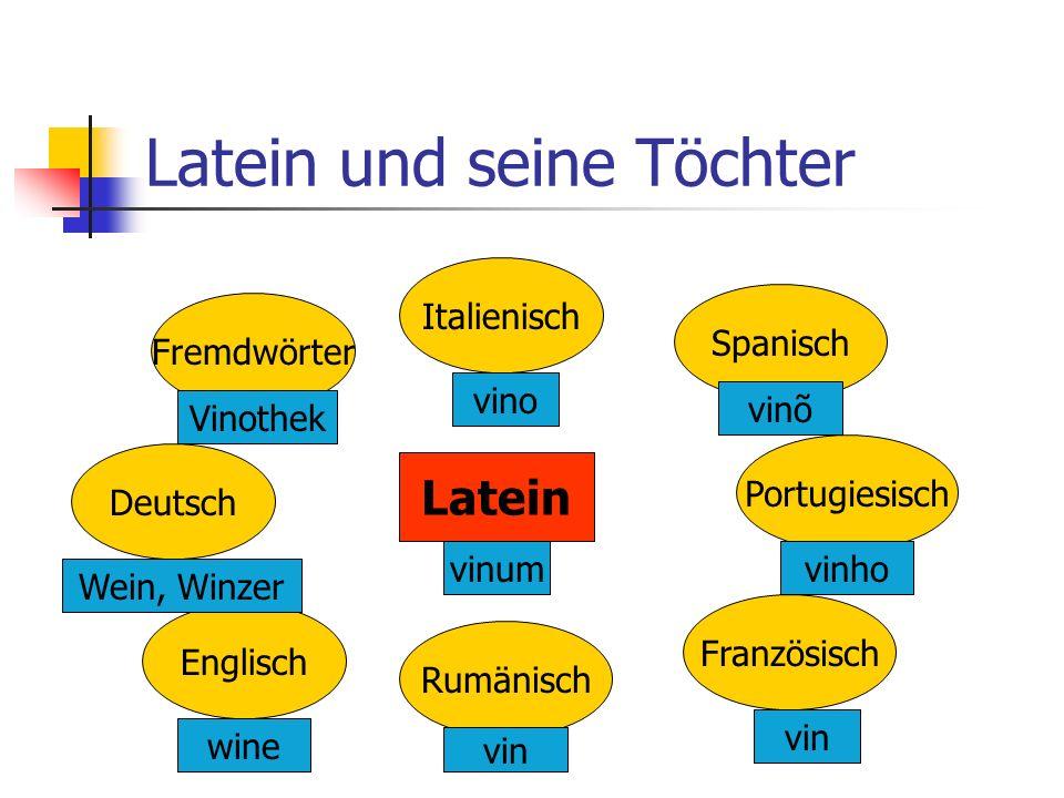 Was muss ich können, um Latein zu wählen?!.