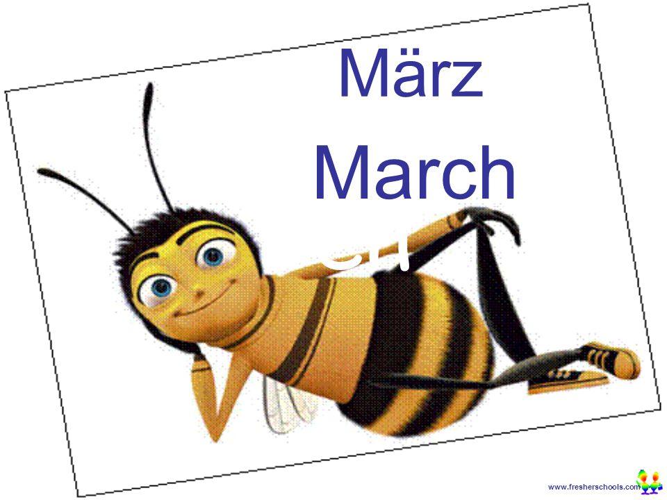 www.fresherschools.com Ben März March