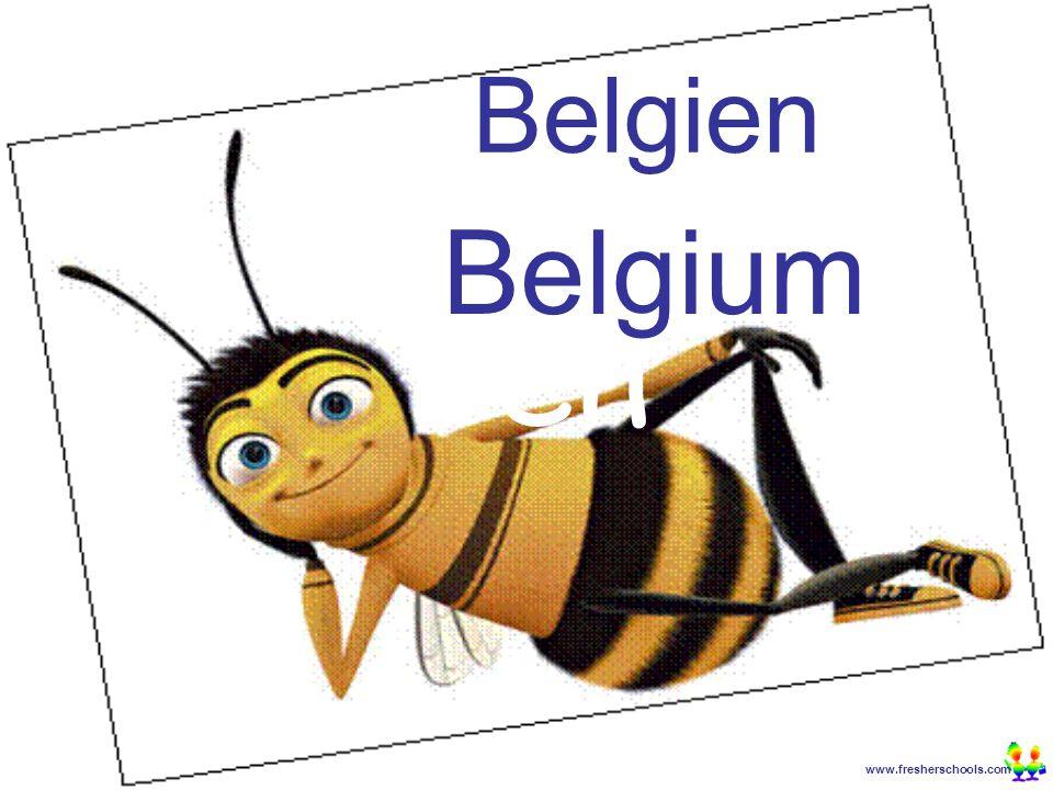 www.fresherschools.com Ben Belgien Belgium