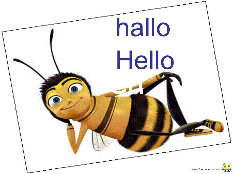 www.fresherschools.com Ben hallo Hello