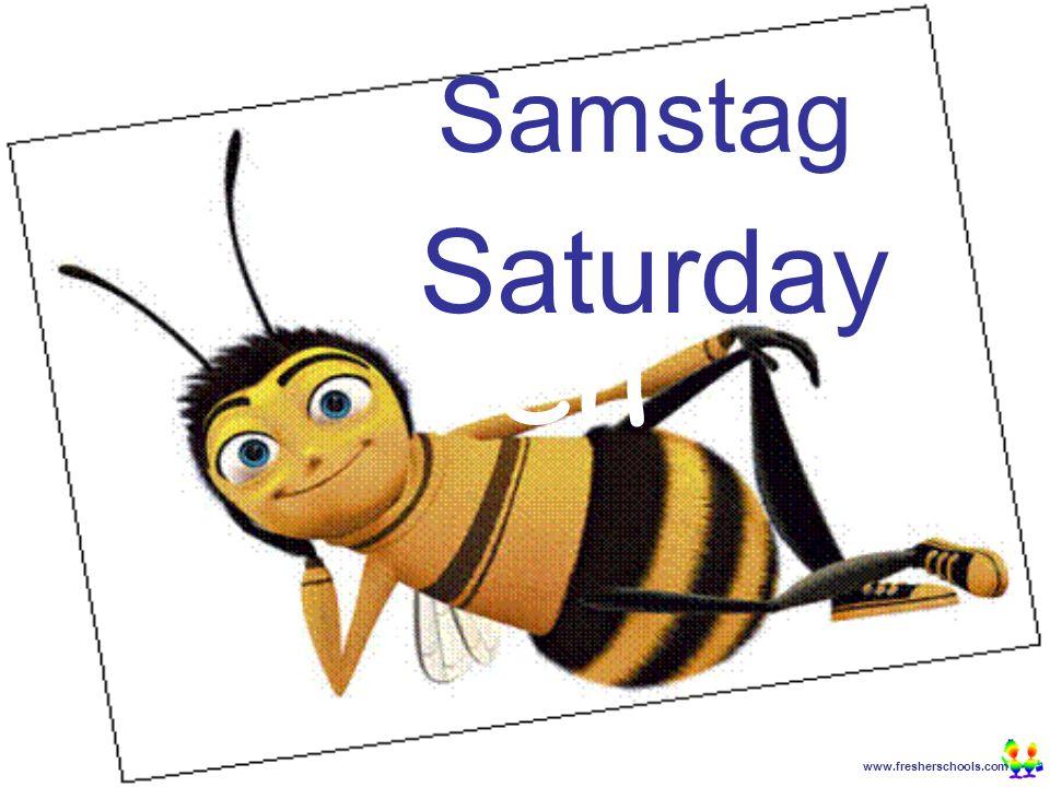 www.fresherschools.com Ben Samstag Saturday