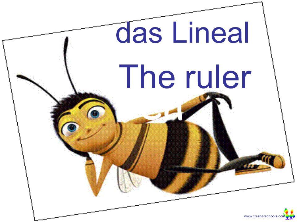 www.fresherschools.com Ben das Lineal The ruler