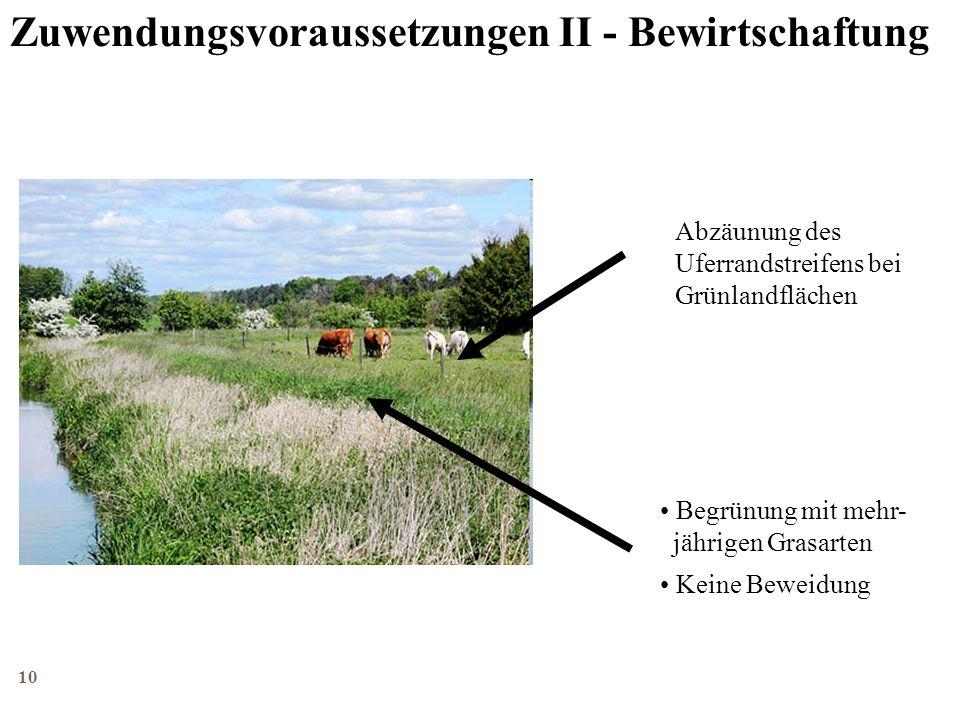 11 LILP, 2010 Agrarförderung Förderung der Anlage von Uferrandstreifen Wie wird gefördert.