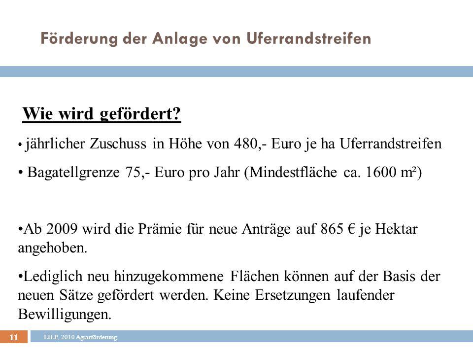 12 LILP, 2010 Agrarförderung Förderung der Anlage von Uferrandstreifen Antragstellung bis 30.06.