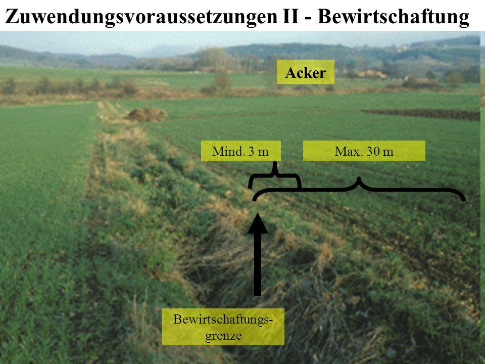 88 LILP, 2010 Agrarförderung Förderung der Anlage von Uferrandstreifen Zuwendungsvoraussetzungen II - Bewirtschaftung nach dem 15.