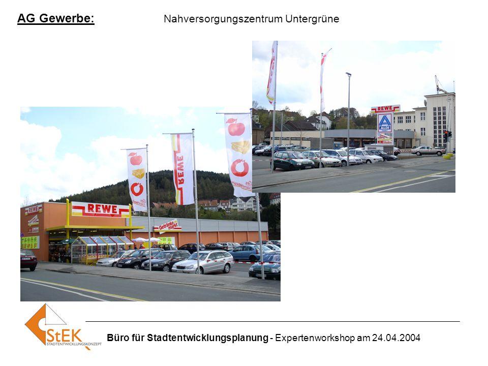 Büro für Stadtentwicklungsplanung - Expertenworkshop am 24.04.2004 AG Gewerbe: Nahversorgungszentrum Untergrüne