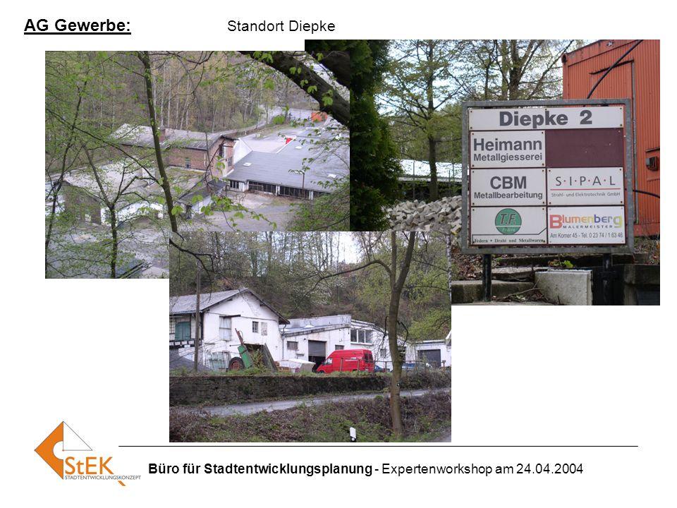 Büro für Stadtentwicklungsplanung - Expertenworkshop am 24.04.2004 AG Gewerbe: Standort Diepke