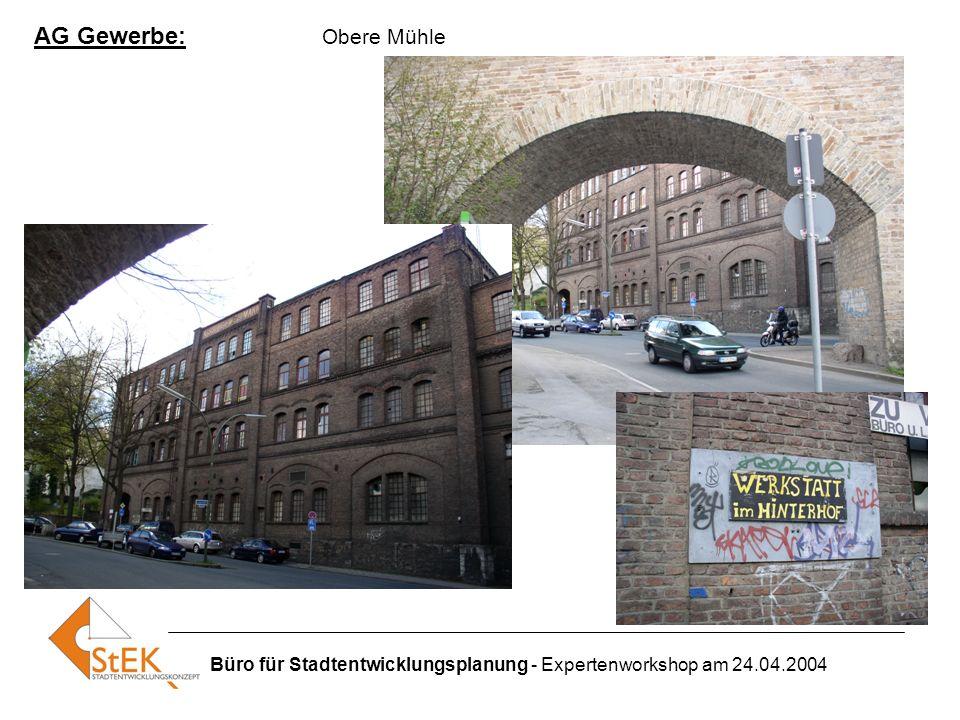 Büro für Stadtentwicklungsplanung - Expertenworkshop am 24.04.2004 AG Gewerbe: Obere Mühle