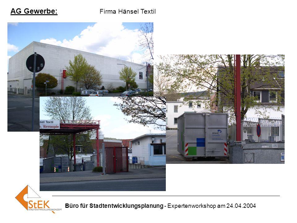 Büro für Stadtentwicklungsplanung - Expertenworkshop am 24.04.2004 AG Gewerbe: Firma Hänsel Textil