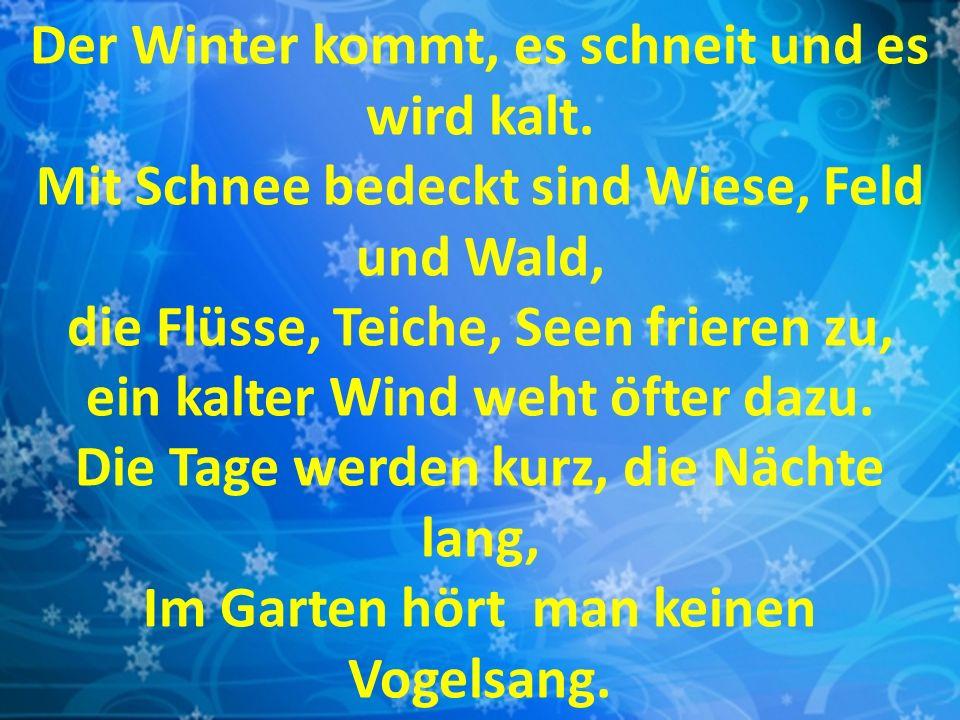 Der Winter kommt, es schneit und es wird kalt. Mit Schnee bedeckt sind Wiese, Feld und Wald, die Flüsse, Teiche, Seen frieren zu, ein kalter Wind weht