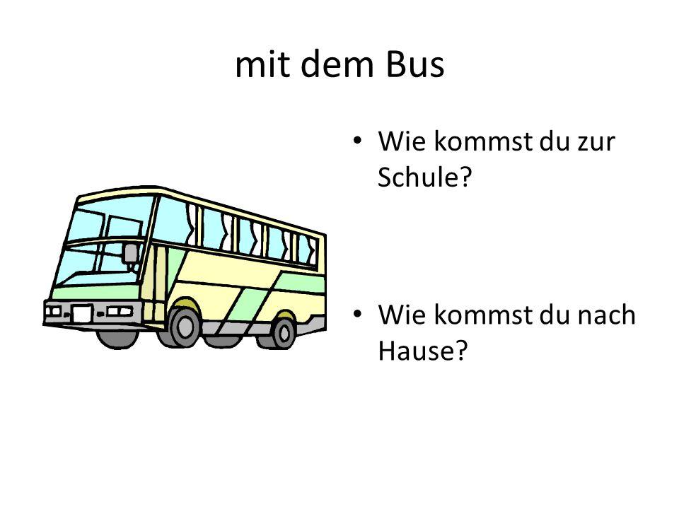 mit dem Bus Wie kommst du zur Schule? Wie kommst du nach Hause?