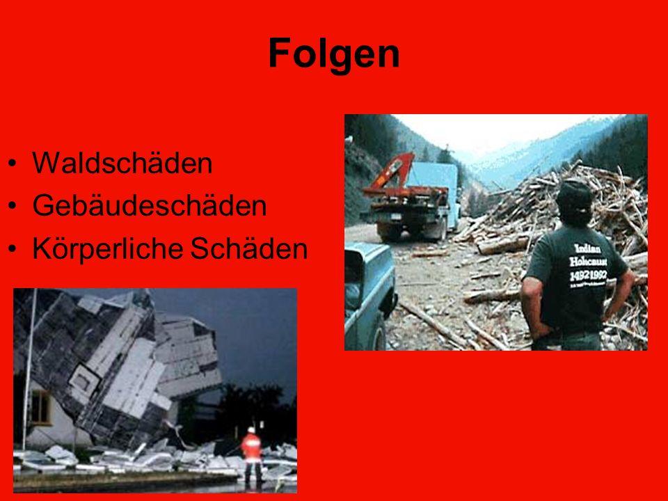 Folgen Waldschäden Gebäudeschäden Körperliche Schäden