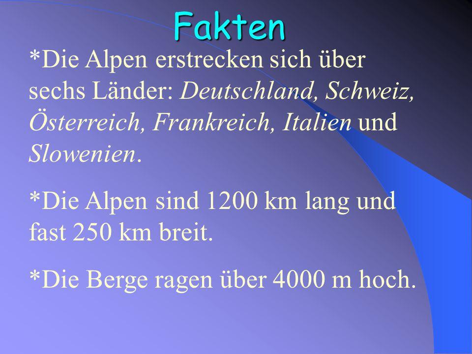 Inhaltsverzeichnis Fakten Eine weisse Märchenwelt Situation in den Alpen Die Tiere und Pflanzen Was tun?