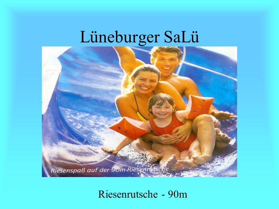 SaLü in Lüneburg Das Sole-Wellenbad, fast wie die Nordsee.