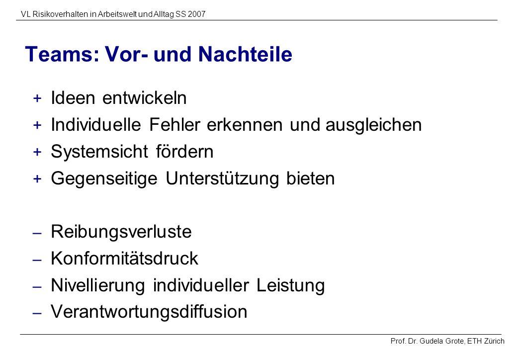 Prof. Dr. Gudela Grote, ETH Zürich VL Risikoverhalten in Arbeitswelt und Alltag SS 2007 Teams: Vor- und Nachteile + Ideen entwickeln + Individuelle Fe