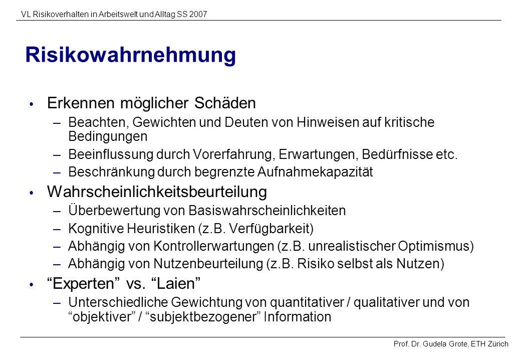 Prof. Dr. Gudela Grote, ETH Zürich VL Risikoverhalten in Arbeitswelt und Alltag SS 2007 Risikowahrnehmung Erkennen möglicher Schäden –Beachten, Gewich
