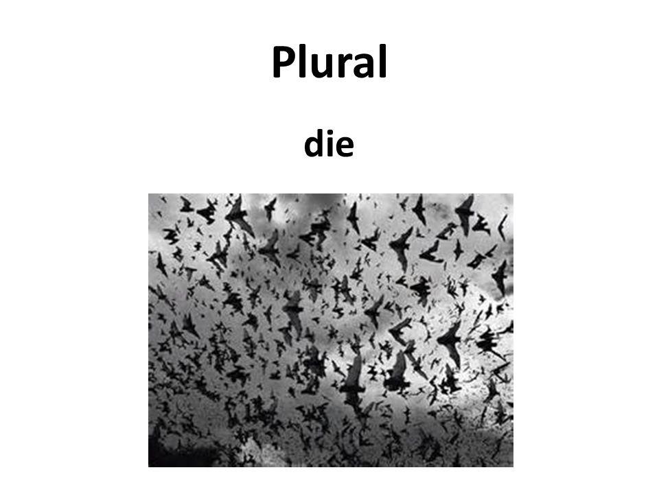 Plural die