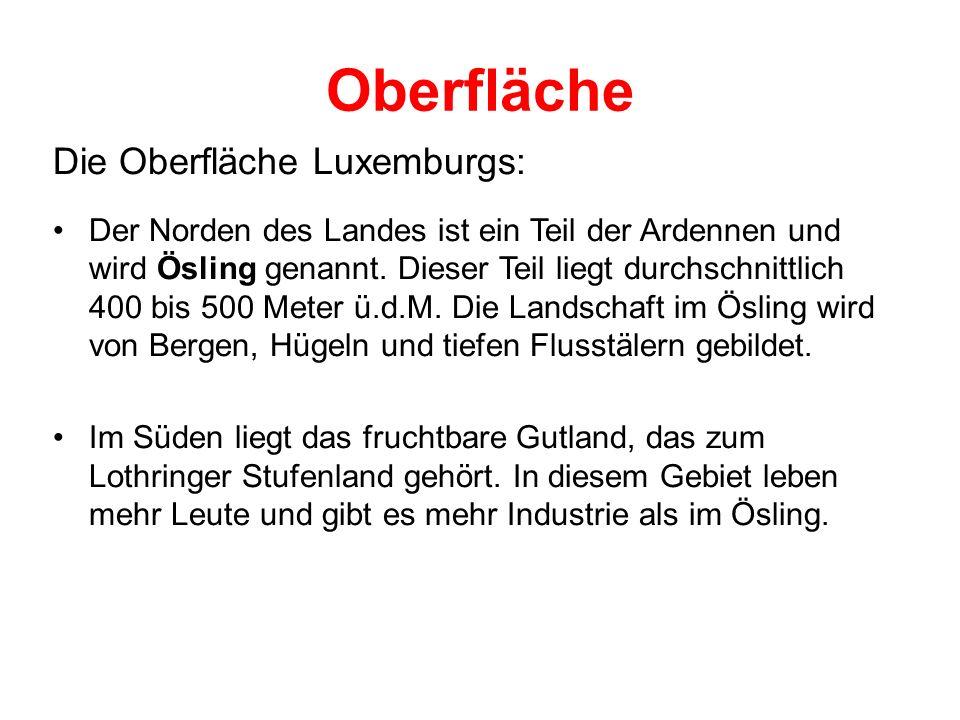 Oberfläche Die Oberfläche Luxemburgs: Der Norden des Landes ist ein Teil der Ardennen und wird Ösling genannt. Dieser Teil liegt durchschnittlich 400