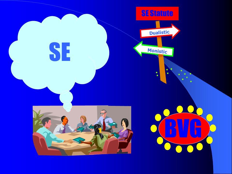 SE Statute Dualistic Monistic