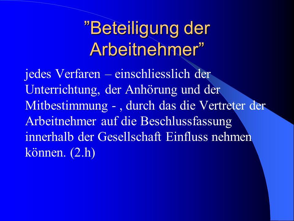 SE und andere Bestimmungen Verfahrensmissbrauch (Dir.