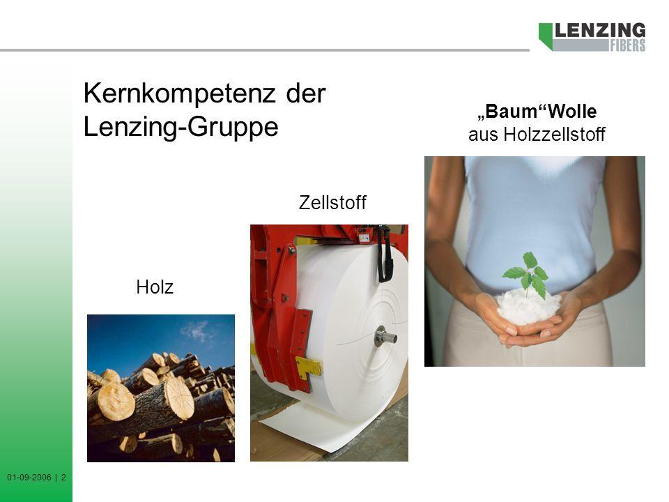 01-09-2006 | 3 Einsatzgebiete der Lenzing Produkte