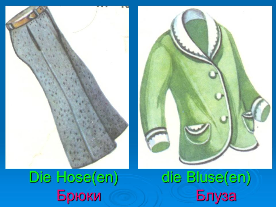 Die Hose(en) die Bluse(en) Брюки Блуза Die Hose(en) die Bluse(en) Брюки Блуза