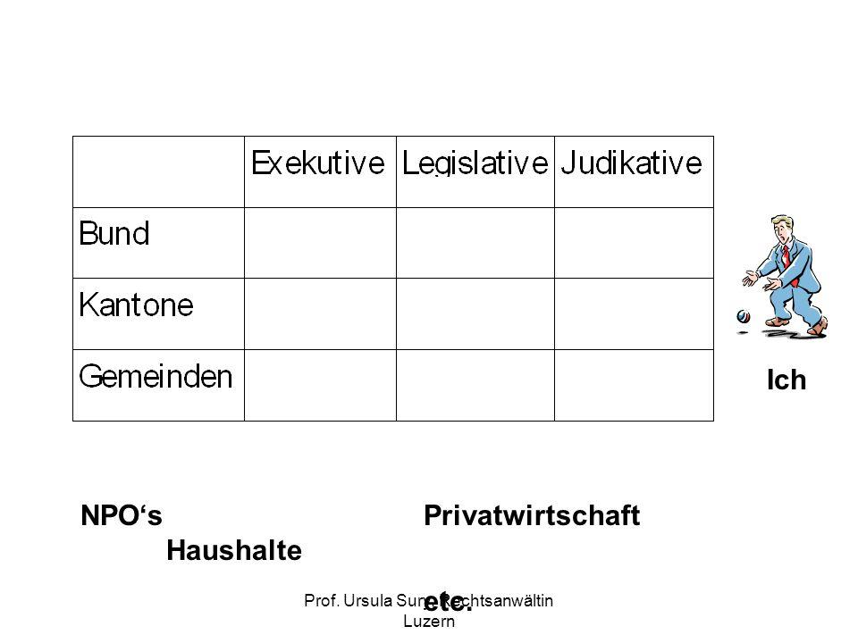 Prof. Ursula Sury, Rechtsanwältin Luzern NPOsPrivatwirtschaft Haushalte etc. Ich
