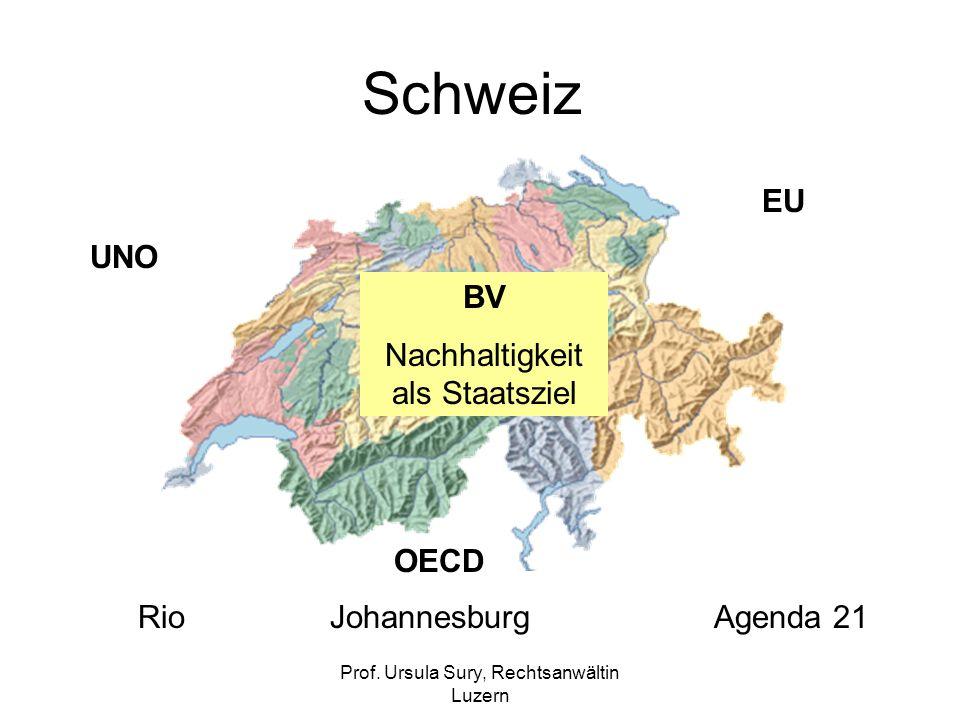 Prof. Ursula Sury, Rechtsanwältin Luzern Schweiz BV Nachhaltigkeit als Staatsziel UNO EU OECD RioJohannesburgAgenda 21