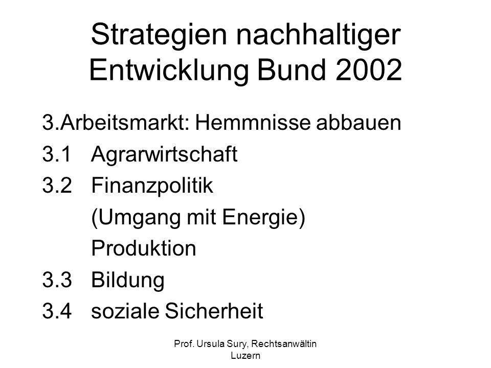 Prof. Ursula Sury, Rechtsanwältin Luzern Strategien nachhaltiger Entwicklung Bund 2002 3.Arbeitsmarkt: Hemmnisse abbauen 3.1Agrarwirtschaft 3.2Finanzp