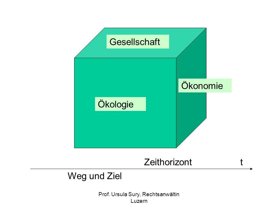 Prof. Ursula Sury, Rechtsanwältin Luzern Gesellschaft Ökologie Ökonomie Weg und Ziel Zeithorizont t