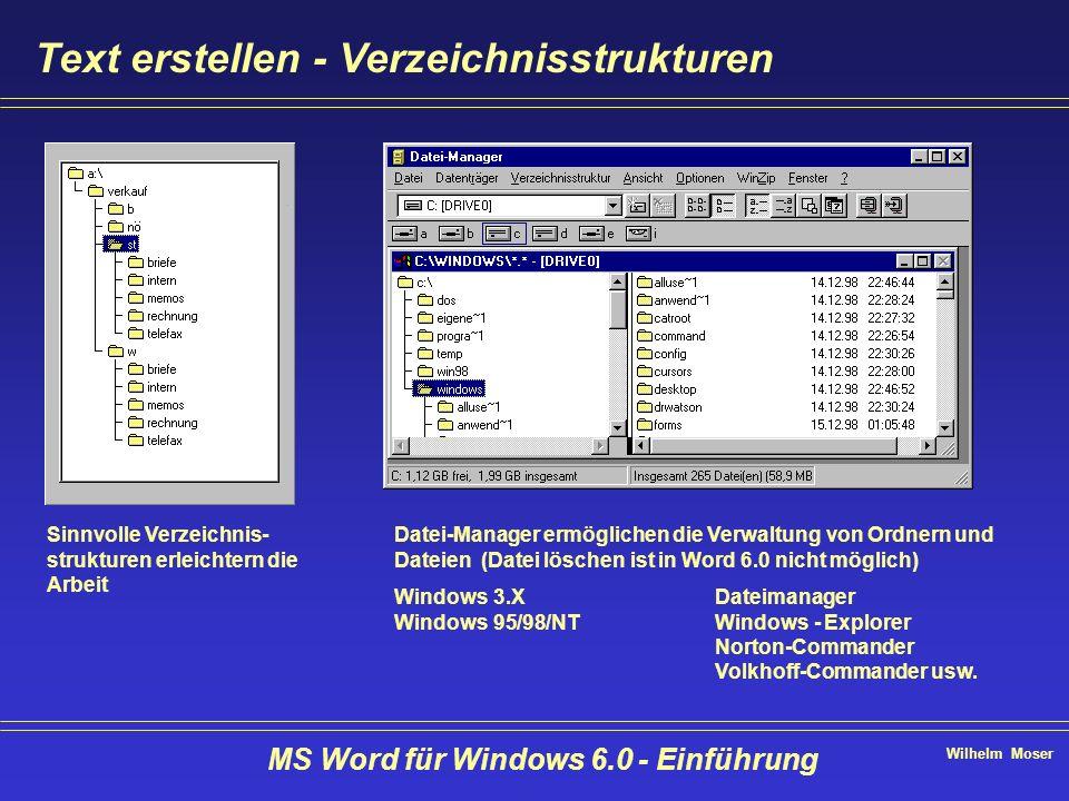 Wilhelm Moser MS Word für Windows 6.0 - Einführung Text erstellen - Verzeichnisstrukturen Sinnvolle Verzeichnis- strukturen erleichtern die Arbeit Dat