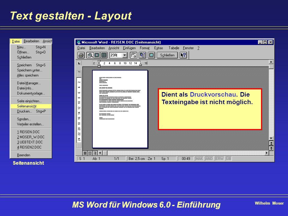 Wilhelm Moser MS Word für Windows 6.0 - Einführung Text gestalten - Layout Normal Gliederung Layout Zentraldokument Seitenansicht Nicht sichtbar: Kopf