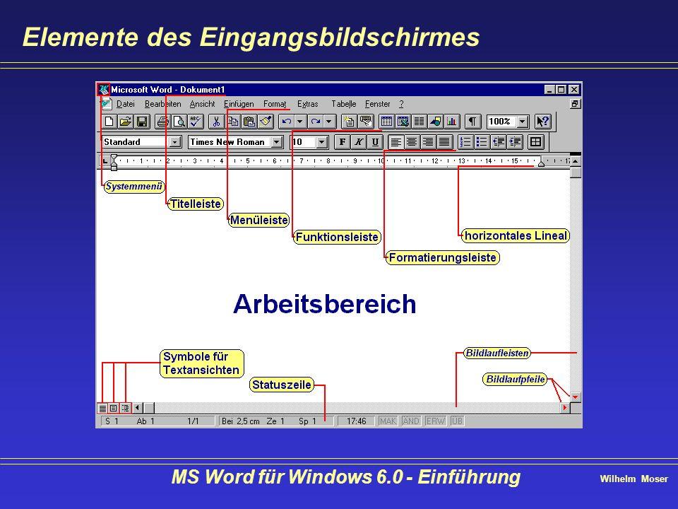 Wilhelm Moser MS Word für Windows 6.0 - Einführung Text bearbeiten - verschieben (drag & drop) Mit gedrückter Taste können Sie mit drag & drop kopieren Nach markieren des Textes klicken Sie auf Format übertragen.