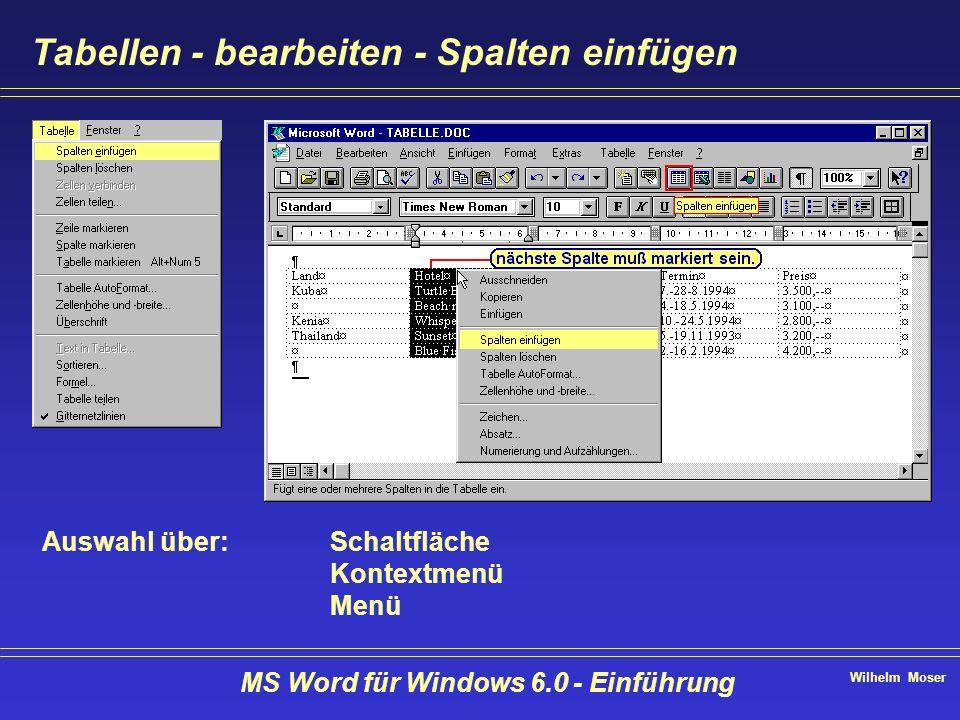 Wilhelm Moser MS Word für Windows 6.0 - Einführung Tabellen - bearbeiten - Spalten einfügen Auswahl über:Schaltfläche Kontextmenü Menü