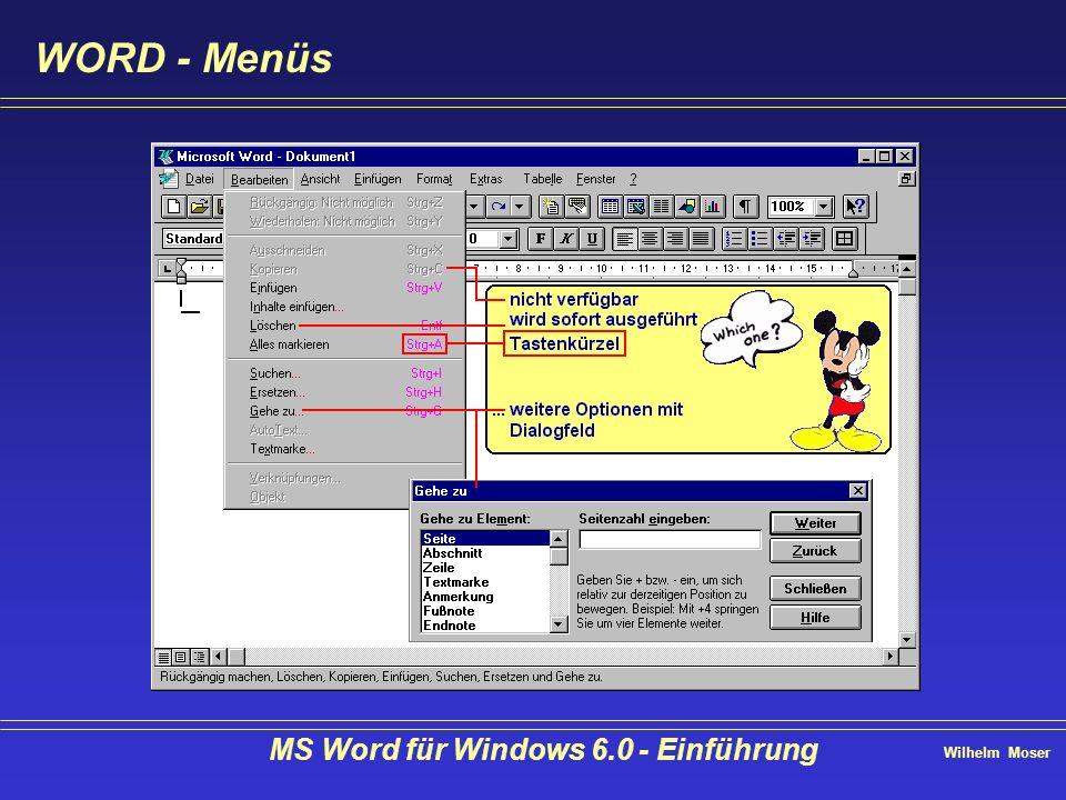 Wilhelm Moser MS Word für Windows 6.0 - Einführung Text gestalten - Aufzählungen erstellen Markieren Sie die betreffenden Textpassagen und klicken Sie dann auf Erforschen Sie selbständig die Register Numerierung und Aufzählung oder Einstellen der Parameter mit Bearbeiten...
