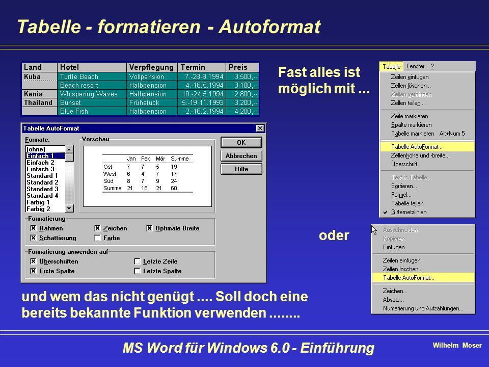 Wilhelm Moser MS Word für Windows 6.0 - Einführung Tabelle - formatieren - Autoformat Fast alles ist möglich mit... oder und wem das nicht genügt....