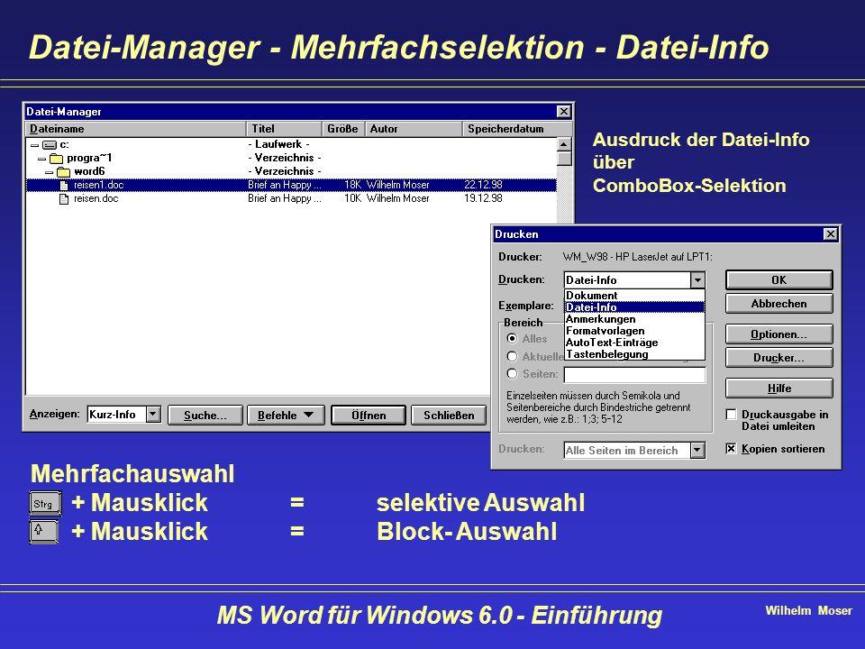 Wilhelm Moser MS Word für Windows 6.0 - Einführung Datei-Manager - Mehrfachselektion - Datei-Info Mehrfachauswahl + Mausklick=selektive Auswahl + Maus
