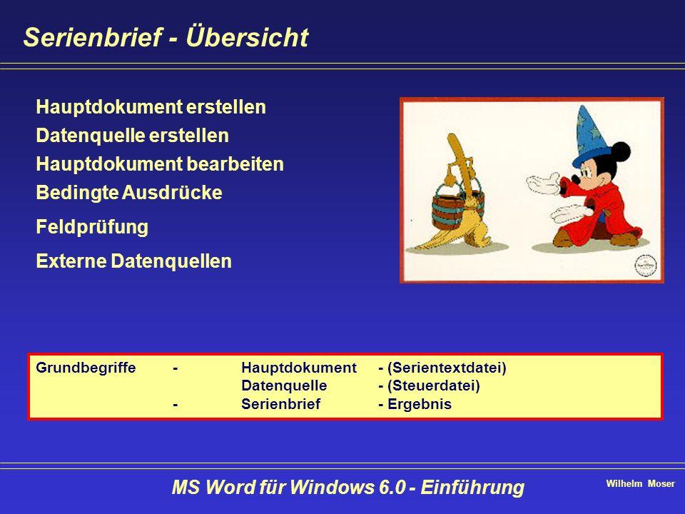 Wilhelm Moser MS Word für Windows 6.0 - Einführung Serienbrief - Übersicht Hauptdokument erstellen Datenquelle erstellen Hauptdokument bearbeiten Bedi