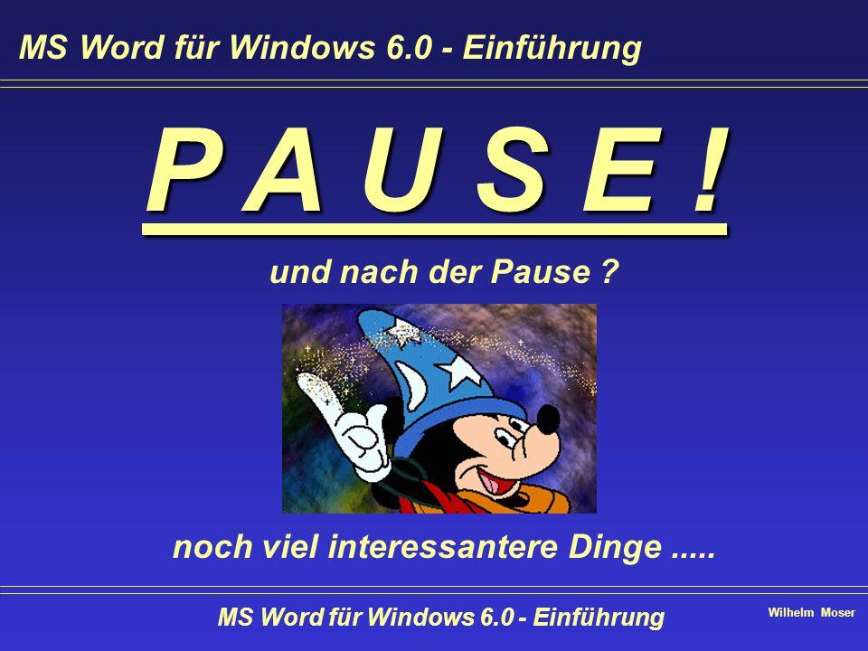 Wilhelm Moser MS Word für Windows 6.0 - Einführung P A U S E ! und nach der Pause ? noch viel interessantere Dinge..... MS Word für Windows 6.0 - Einf